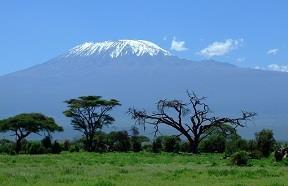 KR05 - Beklim de Kilimanjaro - MA NM