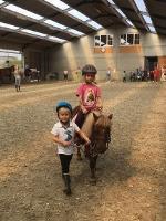 ZOMER WK 5: JEUGD: Joepla's pony/paardenkamp 2